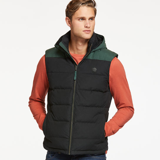 Men's South Twin Hooded Down Vest