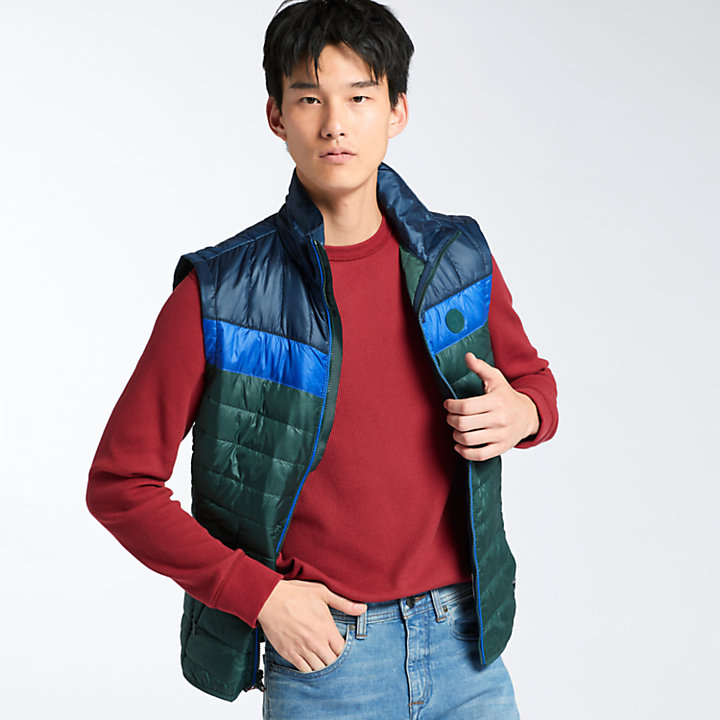 Men's Skye Peak Quilted Vest-