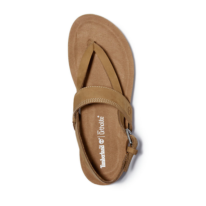 Women's Malibu Waves Thong Sandals-