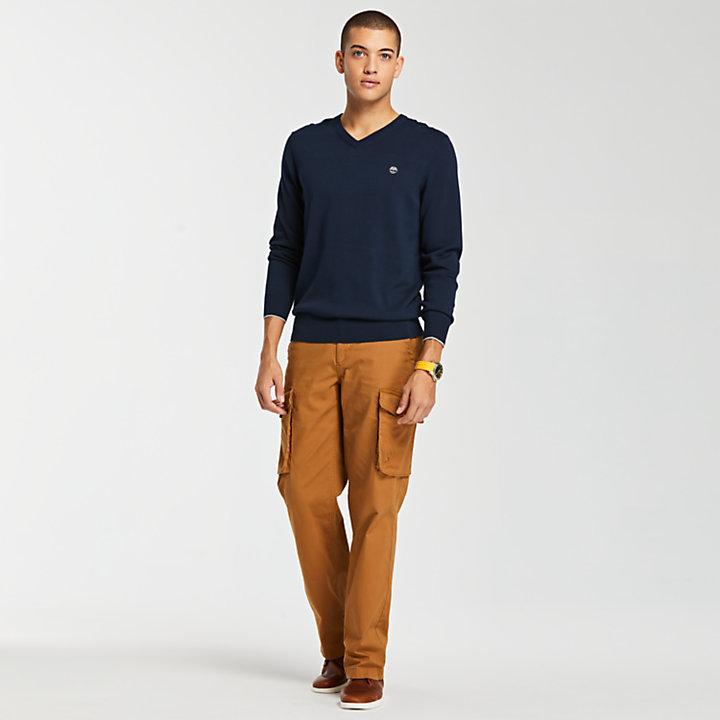 Men's Williams River V-Neck Sweater-