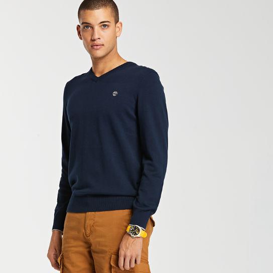 Men's Williams River V Neck Sweater