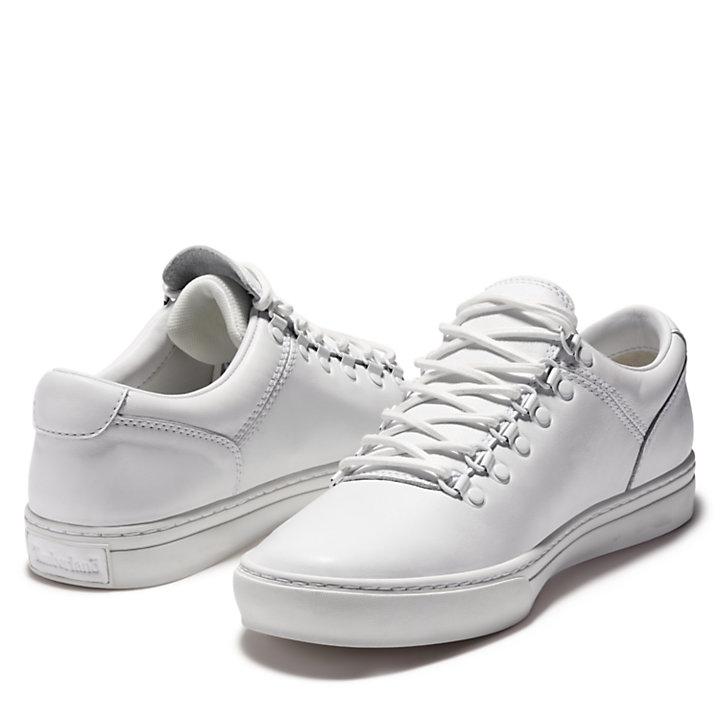 Men's Adventure Cupsole Alpine Oxford Shoes-
