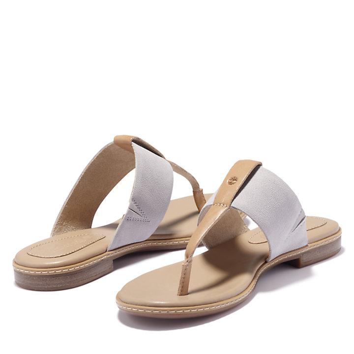 Women's Cherrybrook Thong Sandals-