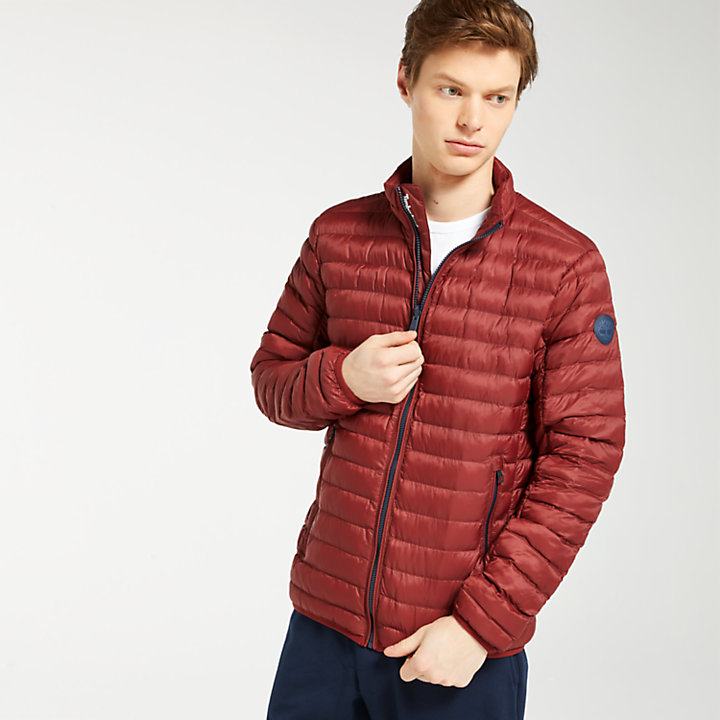 Men's Axis Peak Thermal Jacket-