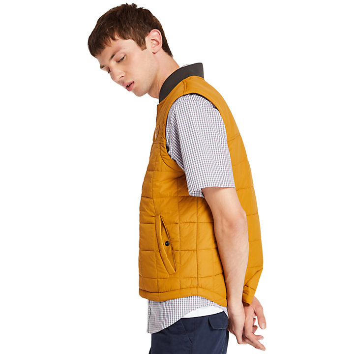 Men's Foss Mountain Lightweight Vest-