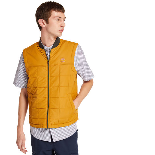 Men's Foss Mountain Lightweight Vest