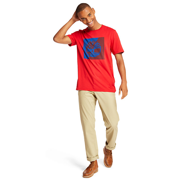 Men's Composed Graphic Short Sleeve T-shirt-
