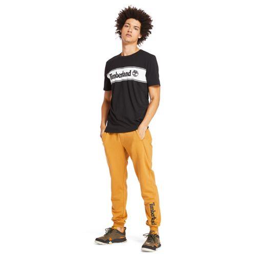 Men's Short Sleeve Linear Stripe Logo T-Shirt-