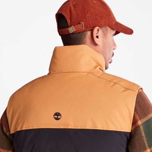 Men's Welch Mountain Puffer Vest-