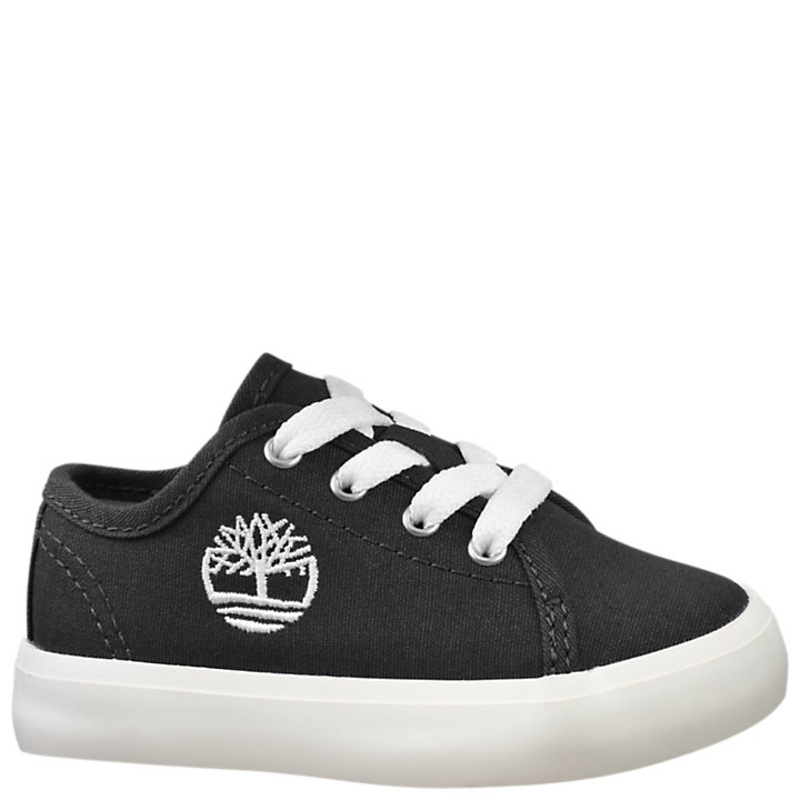 Toddler Newport Bay Canvas Sneakers-
