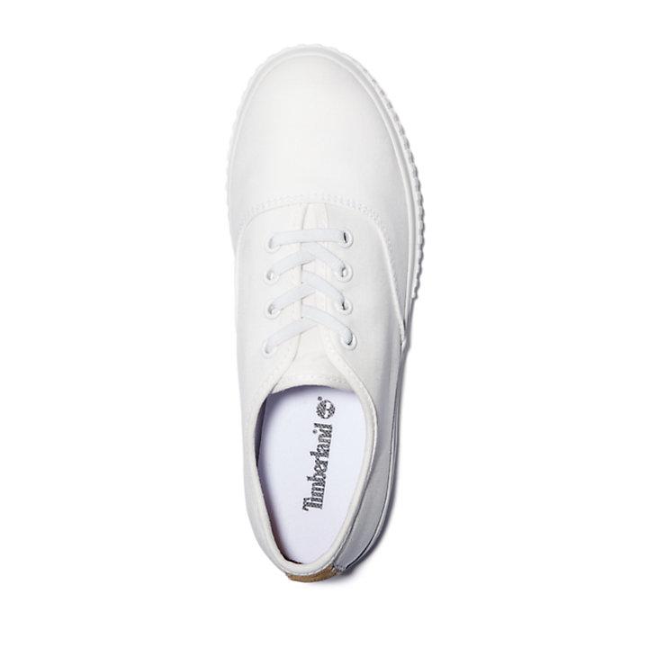 Women's Newport Bay Canvas Sneakers-