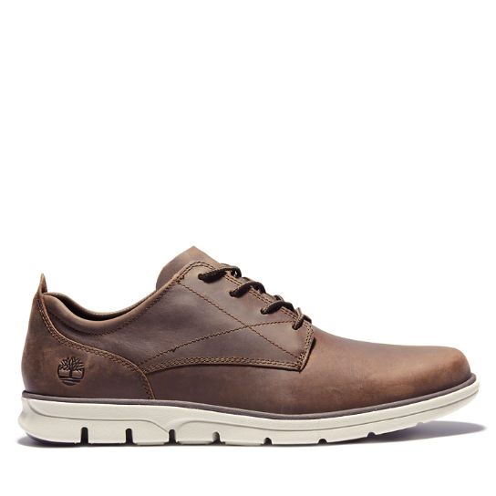 Men's Bradstreet Oxford Shoes