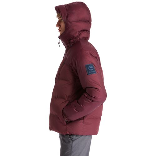 Men's Neo Summit Hooded Winter Jacket-