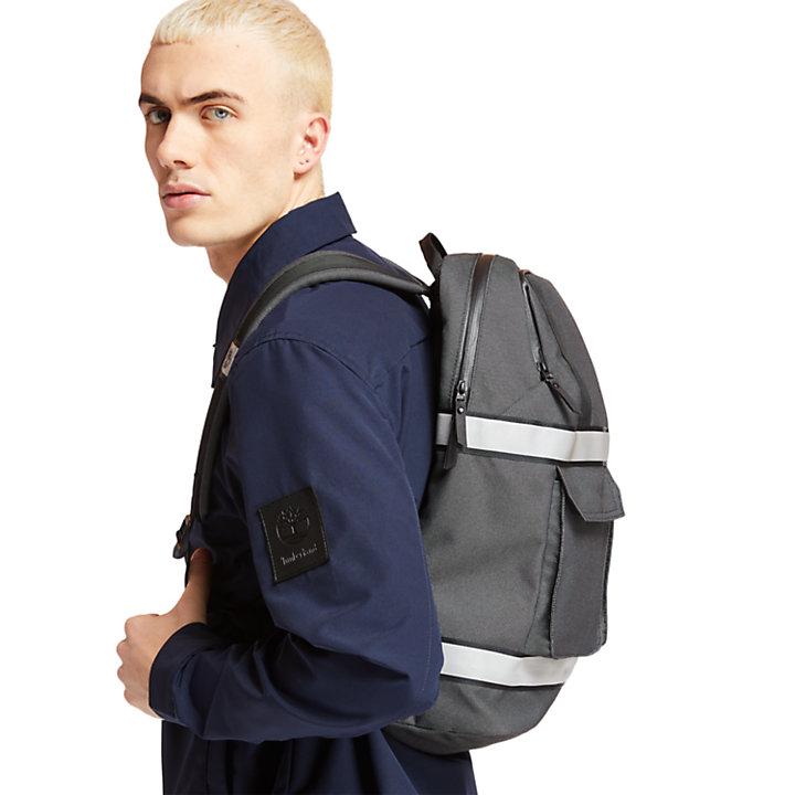 Lindenwood Travel Backpack-