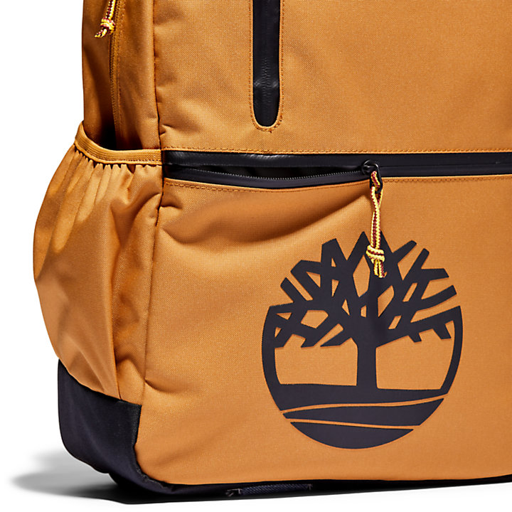 Storrow Park Backpack-