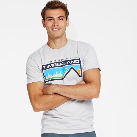 Men's Retro Mountainscape Graphic T-Shirt