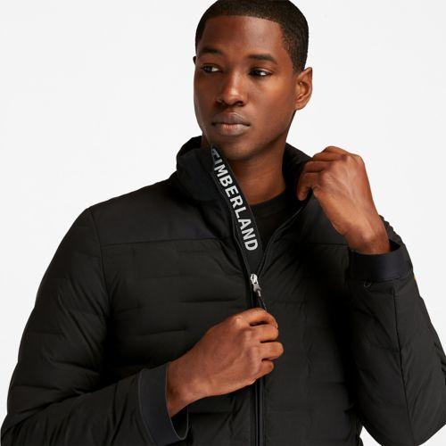Men's Bear Head Midweight Insulated Jacket-